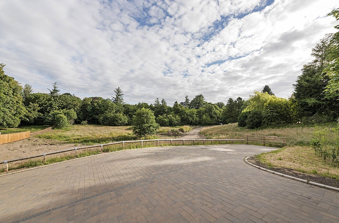 Plots @ 50 Runnymede Road – one remaining plot
